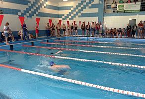 Международные соревнования по плаванию